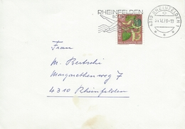 Cover Used Rheinfelden 1976.   Switzerland.  H-920 - Pro Juventute