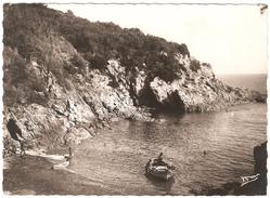 Ile Du Levant - Plage Rioufrède - 1949 - Autres Communes