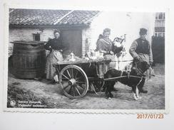Postcard Laitiere Flamande Vlaamsche Melkboerin [ Flemish Milkmaid ] Dog Cart Farming Interest  My Ref B1662 - Farms