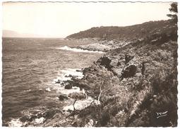 Ile Du Levant - Pointe Du Petit Avis - Autres Communes