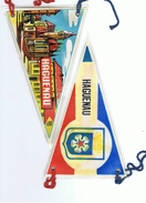 Fanion HAGUENAU Plastifié, Années 1960-1970 - Andere Sammlungen