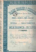 ACTION DES MINES  ET USINES A ZINC DE SILESIE - ANNEE 1924 - Mines