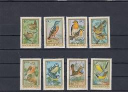 Hongrie - Oiseaux Divers, Neufs**, Année 1973, PA Y.T. 360/367