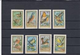 Hongrie - Oiseaux Divers, Neufs**, Année 1973, PA Y.T. 360/367, Série Non Dentelée