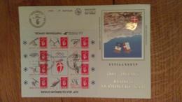 65/ JEUX OLYPIQUES D HIVER SAVOIE 1992 ALBERVILLE GRANDE ENVELOPPE N° 1904 - FDC