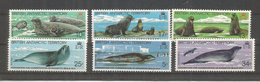 BRITISH ANTARCTIC TERRITORY  ANTARTIDA POLO SUR ANTARCTICA FOCAS SEAL MAMIFERO - Faune Antarctique