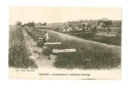 B Xertigny La Faisanderie Un Sentier D'elevage - Ohne Zuordnung