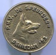 Dog, Hund, Chien -  Vintage Pin, Badge, Abzeichen - Animaux