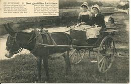 Auvergne Nos Gentilles Laitieres - Clermont Ferrand