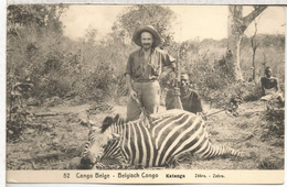 CONGO BELGA ENTERO POSTAL CAZA DE CEBRA ZEBRA HUNTING RIFLE FAUNA MAMIFERO - Animalez De Caza
