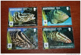 WWF  Montserrat  2016  Fish - Fishes