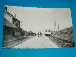 """66 ) Osséja N° 12 - La Gare """" Train """"- EDIT - Narbo - France"""