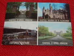 HINGENE  -  Kasteel D' Ursel - Cultureel Centrum - Kasteel Marnix De St Aldegonde - Bornem