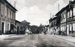 HAUTE GARONNE - Castelmaurou - Route D'Albi - France