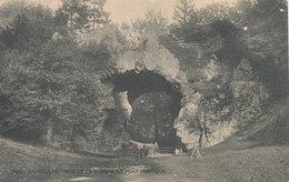 BRUXELLES / BRUSSEL /  BOIS DE LA CAMBRE / LE RAVIN ET LE PONT RUSTIQUE - Forests, Parks