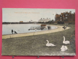 Angleterre - Portsmouth - Swans And Canoe Lake - Scans Recto-verso - Portsmouth