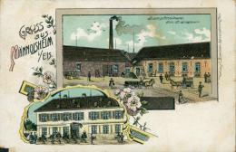 67 MAENNOLSHEIM / Dampfmolkerei / - Andere Gemeenten
