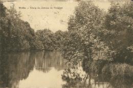 BE WELLIN / Etang Du Château De Neupont / - Wellin