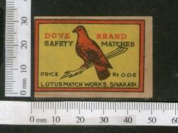 India 1950's Bird Dove Brand Match Box Label Animal # MBL018 - Matchbox Labels