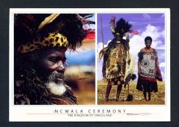 SWAZILAND  -  Incwala Ceremony  Used Postcard As Scans - Swaziland