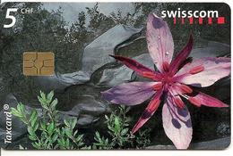 CARTE-PUCE-2005-SUISSE-5CHF-FLEUR Des Zones Alluviales-TBE - Fleurs
