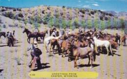 Wyoming Greetings From Casper Horse Roundup Scene