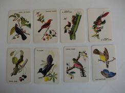 Complete Set Of 16 Birds Oiseaux Aves Portugal Portuguese Pocket Calendars 1986 - Klein Formaat: 1981-90