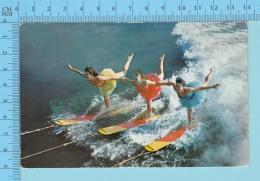 Cypress Garden Florida - Aqua-Ballerinas Performing, Used In 1957 + Usa Stamp - 2 Scans - Miami Beach
