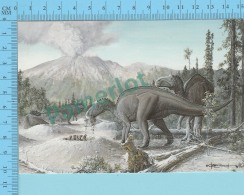 Dinosaure Dinosaur  , Nodosaur  - Description à L'arriere, Description At The Back  - 2 Scans - Autres