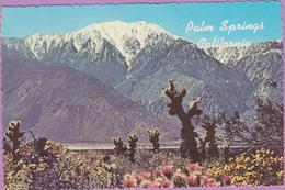 Usa °° Californie - Palm Springs . San Jacinto Mountain - Dentelée écrite  **  Pli Coin B G - Palm Springs