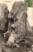 BRIGNOGAN -29- L'ELEPHANT - Brignogan-Plage
