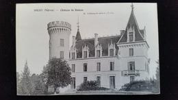CPA D58 Sougy Chateau De Bateau - France