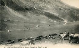 VACHE(COL DE ARAVIS) - Vaches