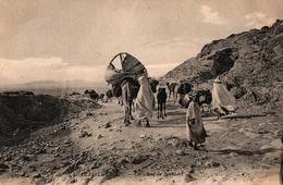 ALGERIE - SAHARIEN ALGERIEN - CARAVANE DE NOMADES - Scene & Tipi