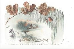 16266 - Souhaits Sincères Petite Carte Paysage Rouges Gorge Violettes 1896 - Fêtes - Voeux
