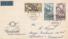 Tchécoslovaquie - Lettres/Oiseaux Divers, Année 1960, Y.T. 1109/1114 Deux Enveloppes - Czechoslovakia