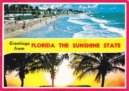 (AMERIQUE) FLORIDA THE SUNSHINE STATE - United States