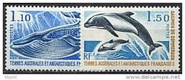 TAAF, N° 064 à N° 065** Y Et T, Cétacés, Rorqual, Dauphin, 64 / 65 - Terre Australi E Antartiche Francesi (TAAF)