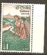 Ceylon 1964 SG 497 Unmounted Mint - Cocos (Keeling) Islands