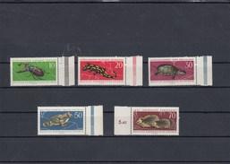 Allemagne Orientale - Neufs** Faune Et Flore Diverses, Année 1963, Y.T. 681/685 - Nuovi