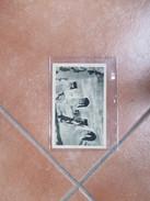 1930 Affrancatura 10 + 10 Definitiva Su Cartolina Albergo GEWBEL-GABIAN Tripolitania La Grotta TrogloditaFoto Lacommare - Libia