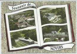 Noyers-Souvenir De Noyers-Multi-vues-(CPSM) - Sonstige Gemeinden