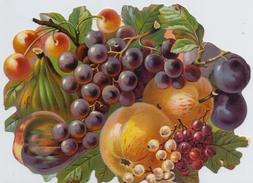 Gesneden Chromo's / Images Découpis: FRUIT,RAISINS,GRAPES,POMME,APPEL,APPLE0,KERSEN,CÉRISES,CHERRY, - Flowers