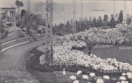 BELGIQUE - EXPOSITION DE GAND 1913 - Gent