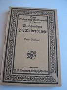 Die Tuberkulose - Schumburg W - 1919 - Books, Magazines, Comics
