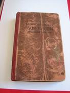 Diagnostisch-therapeutisches Vademecum Für Studierende Und Ärzte - Schmidt, Heinrich U. A. - 1918 - Books, Magazines, Comics