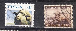 Sud Africa   -   1953.  Pecore Merino. Merino Sheeps