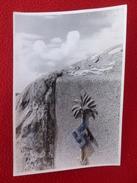 CROIX GAMMEE AFRIKAFELDZUG DAS HAKENKREUZ IN DER PALME PHOTO SIGNE WOLFGANG WEBER 23.5 X 16.5 - War, Military