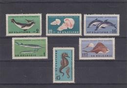 Bulgarie - Neufs**, Faune Et Flore Diverses, Année 1961, Y.T. 1080/1085 - Bulgaria