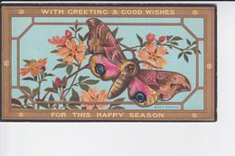 Petite Cp De 1884 Représentant Un Papillon De Nuit Et Fleurs ( Marcus Ward & Co ) - Collections
